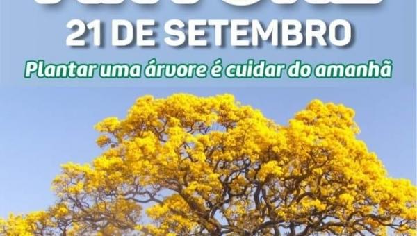 21 de Setembro   Dia Nacional da Árvore